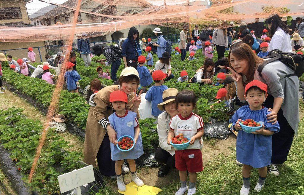 成田幼稚園の春